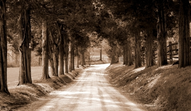 The perfect road