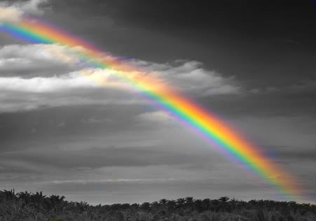 rainbow-on-black-and-white